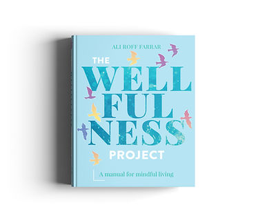 Wellfulness Project 3D01.jpg