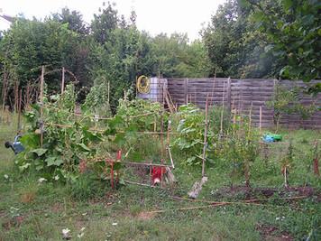 Grand nettoyage du jardin partagé le 23 octobre