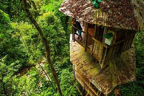writer-travel-costa-rica-treehouses.jpg