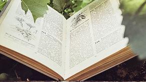 writer-freelance-travel-books.jpg