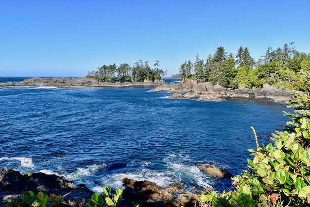 writer-vancouver-island-photographer-fre