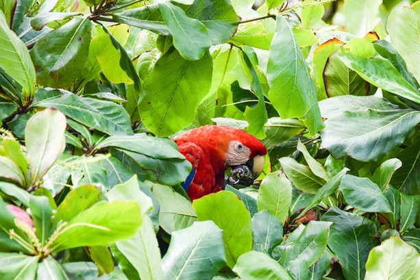 nature-writer-conservation-photographer-