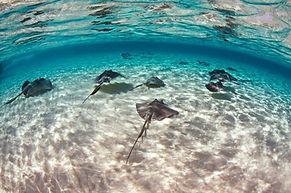 travel-writer-blogger-costa-rica-freelan