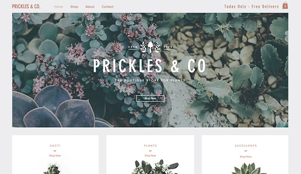 Hem & dekoration website templates – Växtboutique