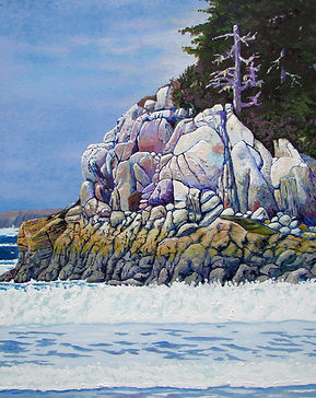 Pollicipes, Calvert Island, Hakai, Surf