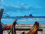 Beach, Driftwood, Calvert Island, West Beach, Hakai