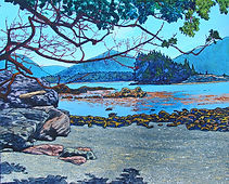 Kelp beds, Side Bay, Brooks Peninsula, Driftwood