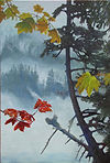 Mists, Vine Maples, Fiord
