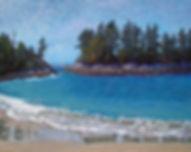 Calvert Island, Hakai, Zebra Zonation