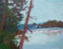 Wet Coast, Calvert Island, Hakai