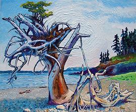 Beach, Medusa, North Coast Trail