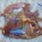 Macrocystis, Beach Wrap, Tangled, Seaweed