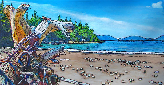 Gooding Cove, West Coast, Driftwood