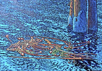 Bull Kelp, Tangled Up In Blue, Pilings, Port Alice