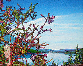 Fireweed, Port Alice, Fiord, Inlet
