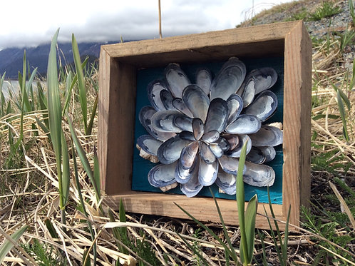 Mussel Shell Flower