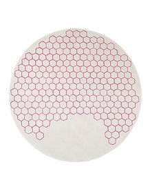 hive-eliane-gervasoni.jpg