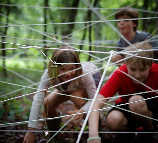 Scout web..