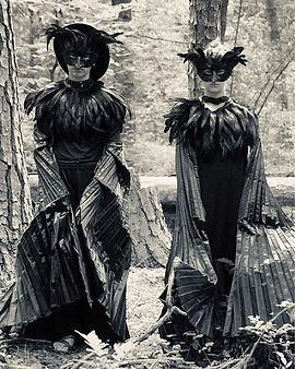 American Crows._._._.__erin.josey _#amer