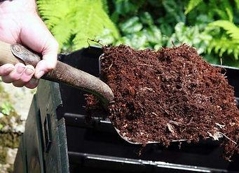 bugs-mulch.jpg