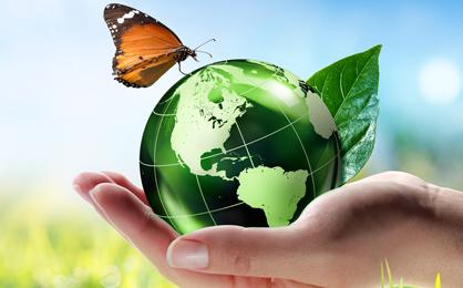 Eco-Friendly-Pest.png