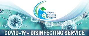 Expert Cleaning Covid-19 logo-01.jpg