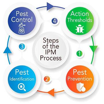 IPM-Blog.jpeg