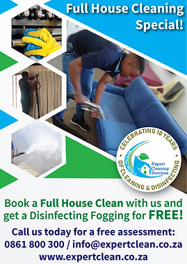 Full house cleaning and fogging special-