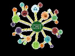 Logo CBIT_edited.png