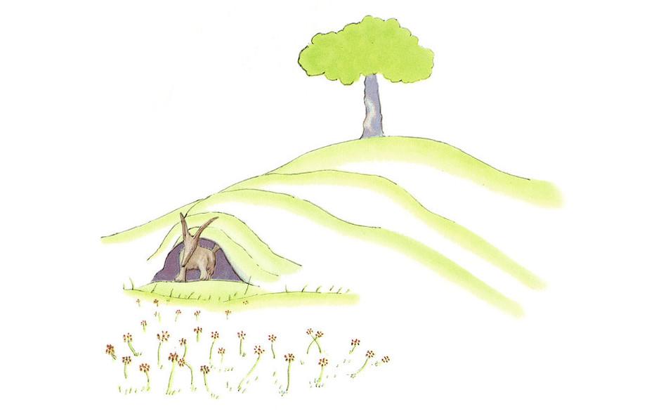 Kleiner_Prinz_-_Zeichnung-17.jpg