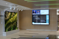 Terrace Lobby Green Wall