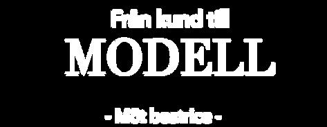 fran_kund_till_modell.png