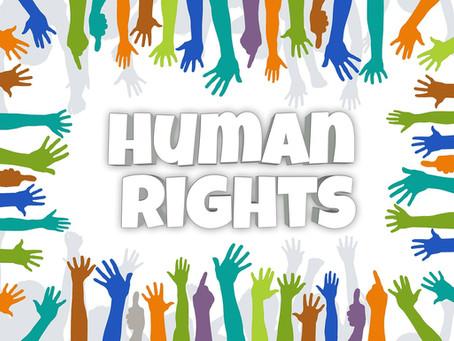 La jurisdicción contencioso-administrativa en España, ¿protege realmente los derechos humanos?