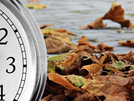 ¿Cuál es el día final del plazo de caducidad de los procedimientos de revisión de oficio?