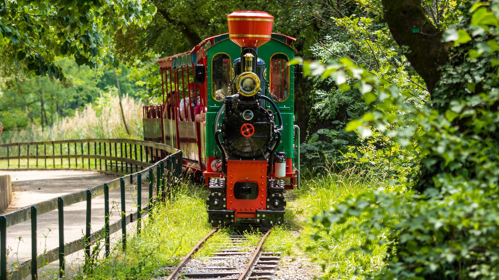 Le Train du Parc