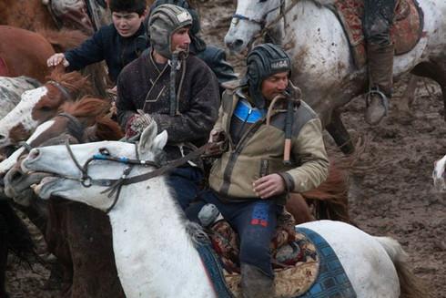 Pamirian Knight, Fights