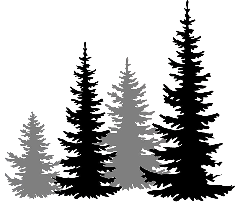 trees3.png