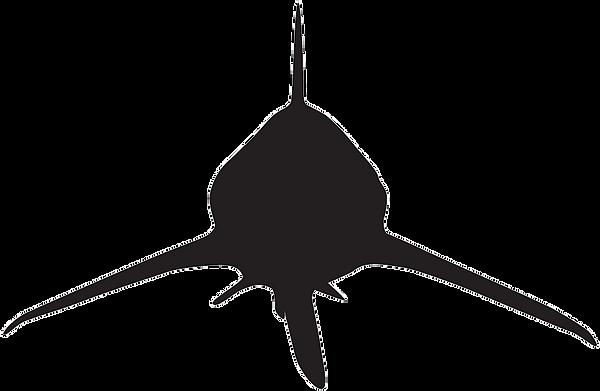 sharkheadon.png