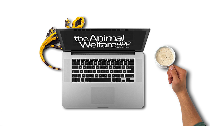 Zoo Welfare Records