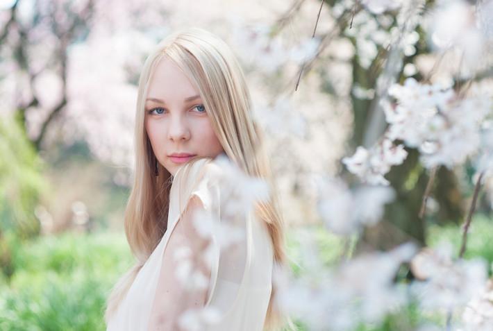 sakura portrait
