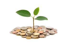 plant growing or sprouting in money