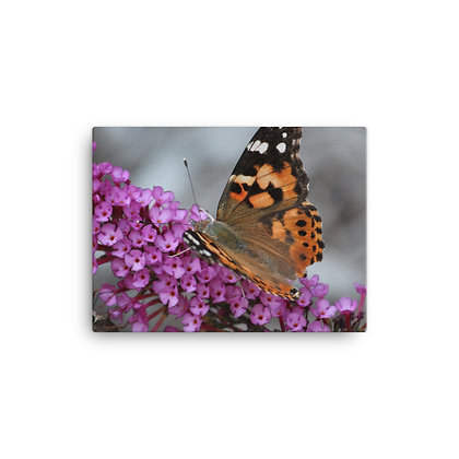 """""""I am the Butterfly 2"""" Canvas Print"""