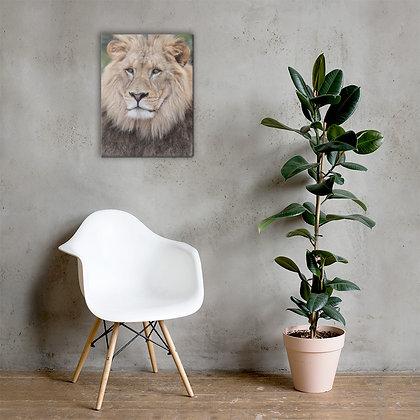 """The Lion Wakes"" Canvas Print"