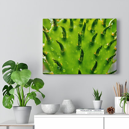 """Spike"" Canvas Gallery Wrap Print"