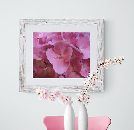 """Pink Hydrangea"" Canvas Print"