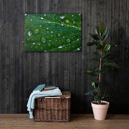 """Dew It"" on Canvas Print"