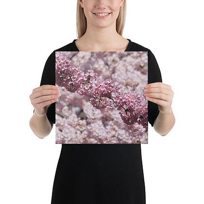 """It's Cherry Time"" Canvas Print"