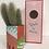 Thumbnail: Cactus «Félicitations » Aÿ Cactus 🌵