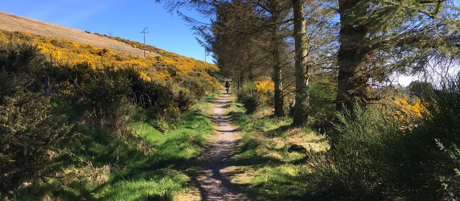Brimmond Hill: Mini-Cairngorm Munro Ride