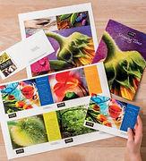 Brochures and Flyers.JPG